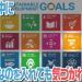 SDGsの中に勝手に変なのを入れても気づかれないのか